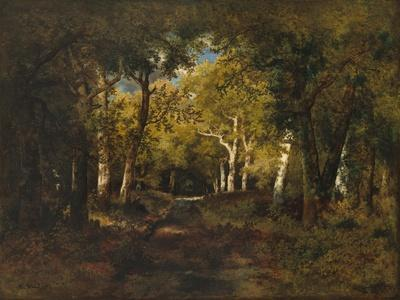 In the Forest, 1874
