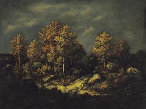 The Jean De Paris Heights in the Forest of Fontainebleau, 1867 by Narcisse Virgile Diaz de la Pena