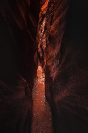 Narrow Pass Buckskin Gulch Slot Canyon Utah Southwest-Vincent James-Photographic Print