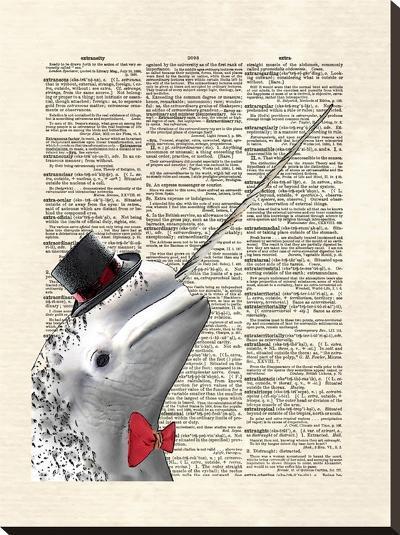 Narwhal Dandy-Matt Dinniman-Stretched Canvas Print