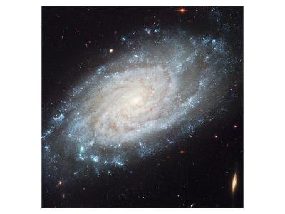 NASA - NGC 3370 Spiral Galaxy--Art Print