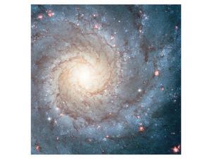 NASA - Spiral Galaxy M74