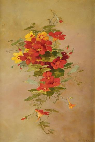 Nasturtiums-Anna Eliza Hardy-Giclee Print