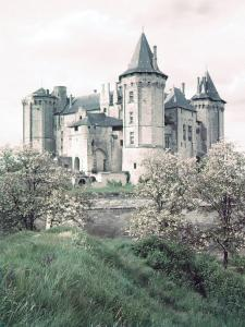 Chateaux of Loire Valley, France by Nat Farbman