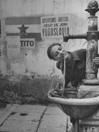 Young Boy Getting a Drink from Fountain in Trieste Region