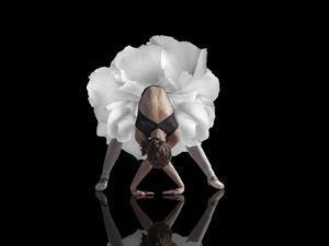Dance by Natalia Baras