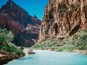 Little Colorado River by Natalie Allen