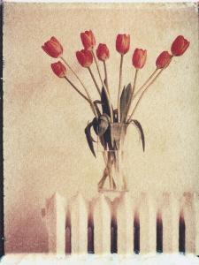 Vase of Tulips on a Radiator by Natalie Fobes