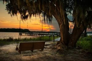Savannah Sunset by Natalie Mikaels