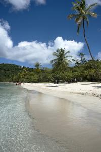 A Spectacular View of Magens Bay in Saint Thomas and the Sandy Beaches by Natalie Tepper