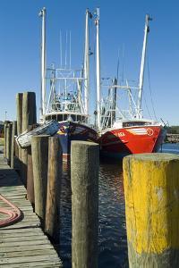 Bayou La Batre, Alabama - Jetty and Fishing Boats by Natalie Tepper