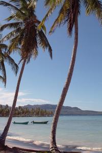 Casa Marina Bay Beach, Las Galleras, Samana, Dominican Republic by Natalie Tepper