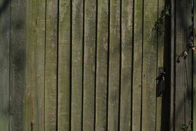 Close Up of a Close-Boarded Fence and Gate with Metal Latch