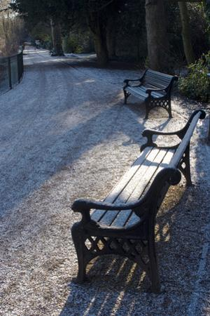 Park Bench under a Light Dusting of Snow by Natalie Tepper