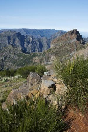 Pico De Areeiro, Madeira, Portugal. View of the Peaks and Mountains at Pico De Areeiro by Natalie Tepper