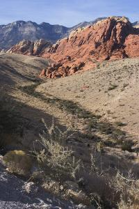 Red Rock National Conservation Area, Las Vegas, Nevada, United States by Natalie Tepper