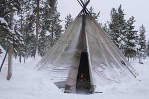 Sami (Laplander) Tent, Reindeer Safari, Jukkasjarvi, Sweden by Natalie Tepper