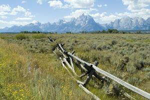 Wooden Fence at the Old Cunningham Cottage in Front of the Teton Range, Grand Teton National Park by Natalie Tepper