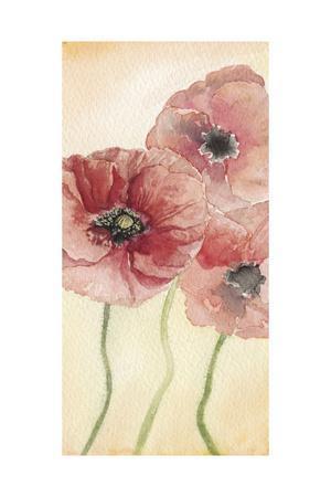Poppy Composition I