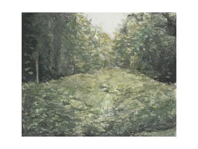 Virginia Forest I