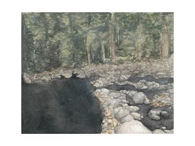 Virginia Forest II