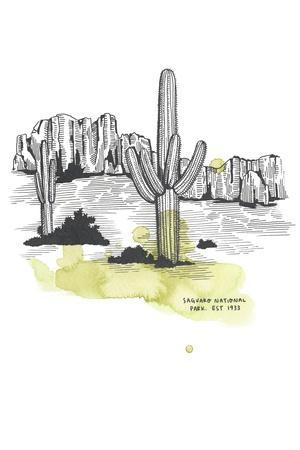 Nation Park Saguaro