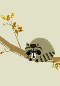 Raccoon by Natasha Marie