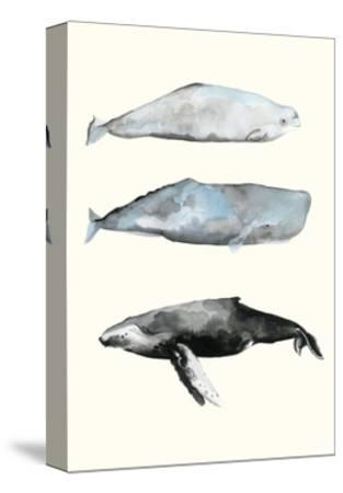 Whale Grouping 1