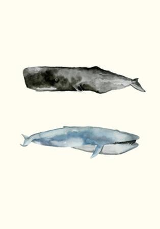 Whale Grouping 2 by Natasha Marie