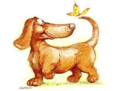 Dachshund and Butterfly