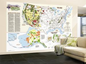 1982 United States Federal Lands Map by National Geographic Maps