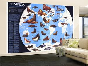 1987 Pinnipeds Around the World Map by National Geographic Maps