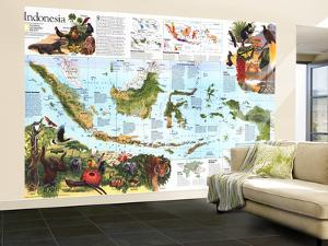 1996 Indonesia Theme Map by National Geographic Maps
