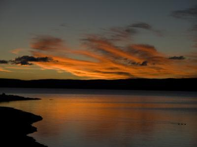 Ducks Swimming at Sunset in Yellowstone Lake by National Geographic Photographer