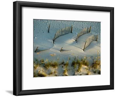 Fences Cast Shadows on Dunes