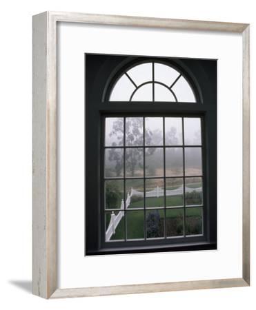 View into a Garden Through a Window on a Foggy Morning