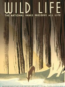 National Parks Travel Poster, Wild Life