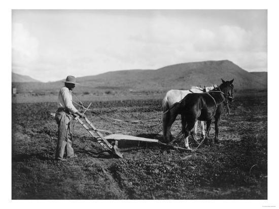 Native American Plowing His Field Photograph - Sacaton Indian Reservation, AZ-Lantern Press-Art Print