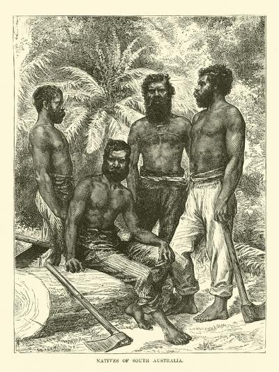 Natives of South Australia--Giclee Print