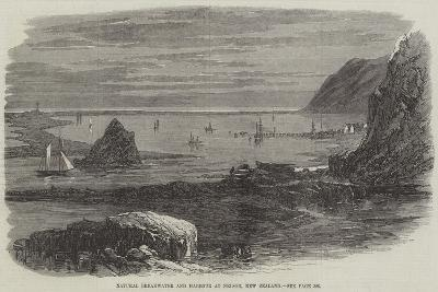 Natural Breakwater and Harbour at Nelson, New Zealand--Giclee Print