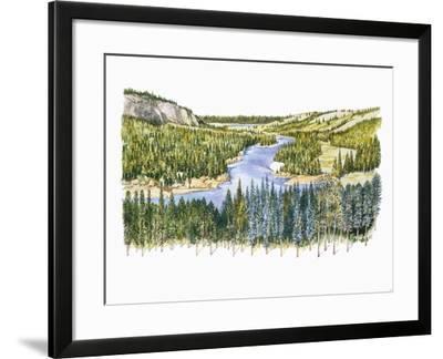 Natural Environments, Taiga--Framed Giclee Print