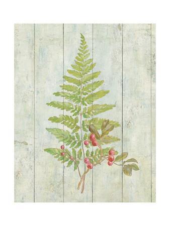 https://imgc.artprintimages.com/img/print/natural-floral-xiii_u-l-q1ayp680.jpg?p=0