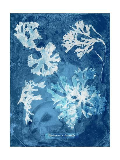Natural Forms Blue 1-THE Studio-Premium Giclee Print