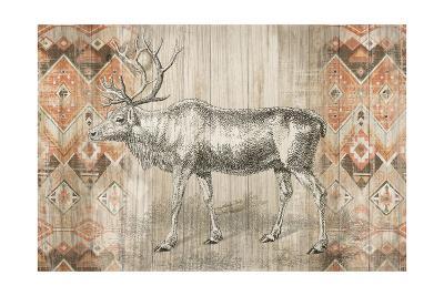Natural History Lodge Southwest IX-Wild Apple Portfolio-Art Print