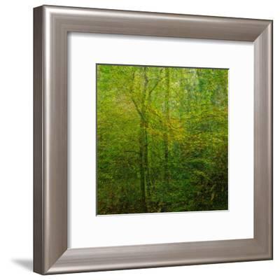 Natural Look VI-Jean-François Dupuis-Framed Art Print