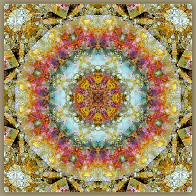 Natural Mandala Out of Flower Photographies-Alaya Gadeh-Photographic Print