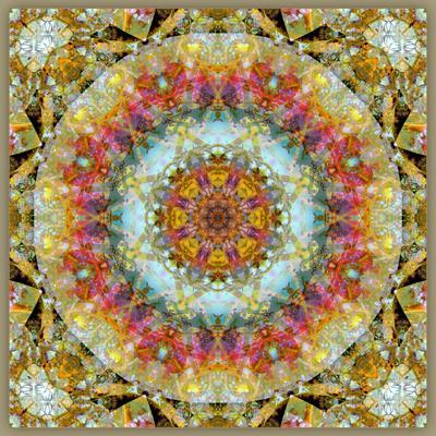 https://imgc.artprintimages.com/img/print/natural-mandala-out-of-flower-photographies_u-l-q11z4q40.jpg?p=0