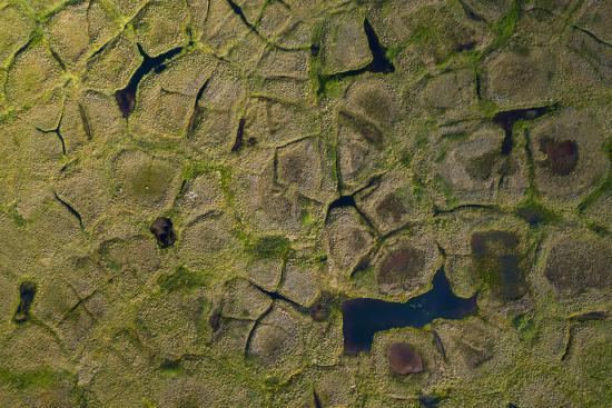 Natural polygonal shapes appear across the tundra landscape as a result of permafrost melt-Jeffrey Kerby-Photographic Print