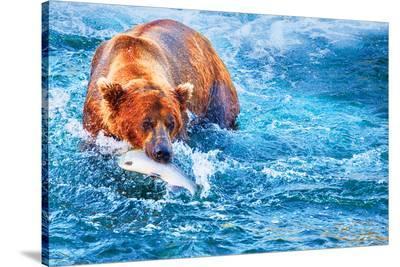 Natural Splendors Alaska III--Stretched Canvas Print