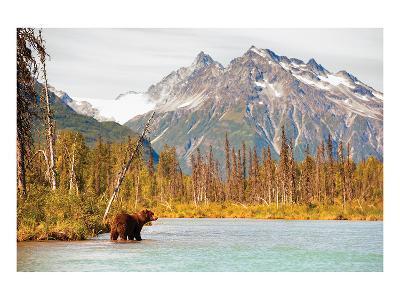 Natural Splendors Alaska IV--Art Print